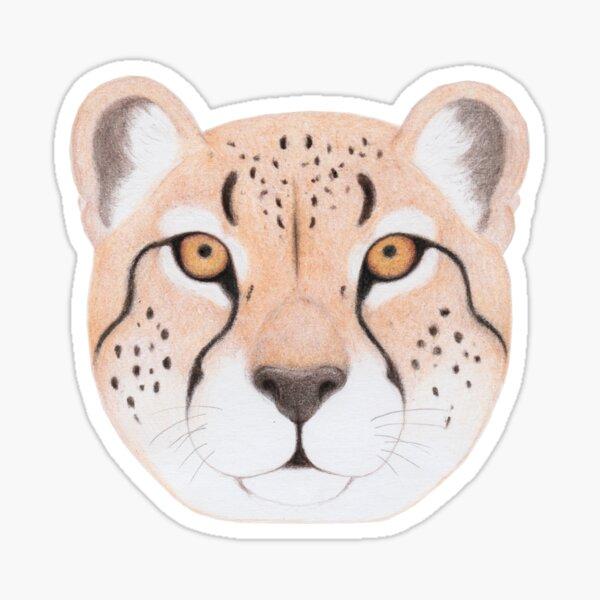 African Cheetah Sticker