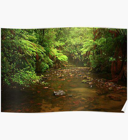Julius River nor west Tasmania , Australia Poster