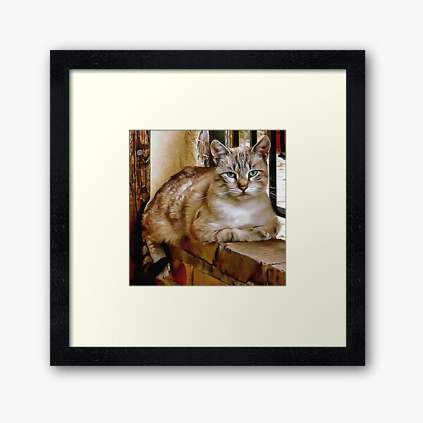Old Blue Eyes Framed Art Print