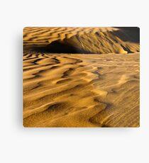 Golden Dunes Metal Print