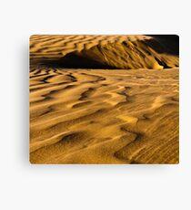 Golden Dunes Canvas Print