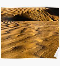 Golden Dunes Poster