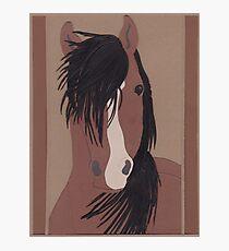 Pferd Fotodruck