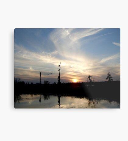 Sunset with Ducks Metal Print