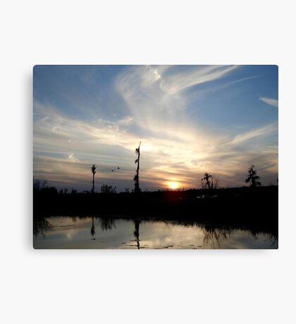 Sunset with Ducks Canvas Print