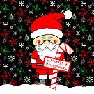Merry Christmas Festive Santa by Sartoris Art & Photography