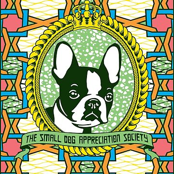BOSTON TERRIER by Afrodeco