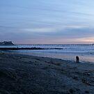 Ocean Beach, San Diego, California - Series © 2010-02.28 by Jack McCabe
