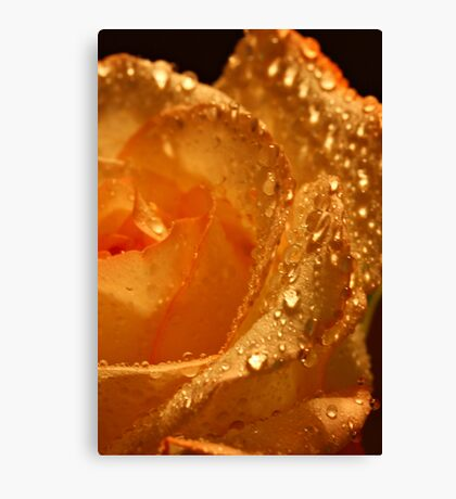 Diamonds and Gold Canvas Print