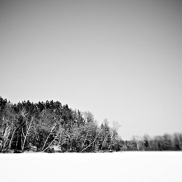 Black and White Nature by trentpurdy
