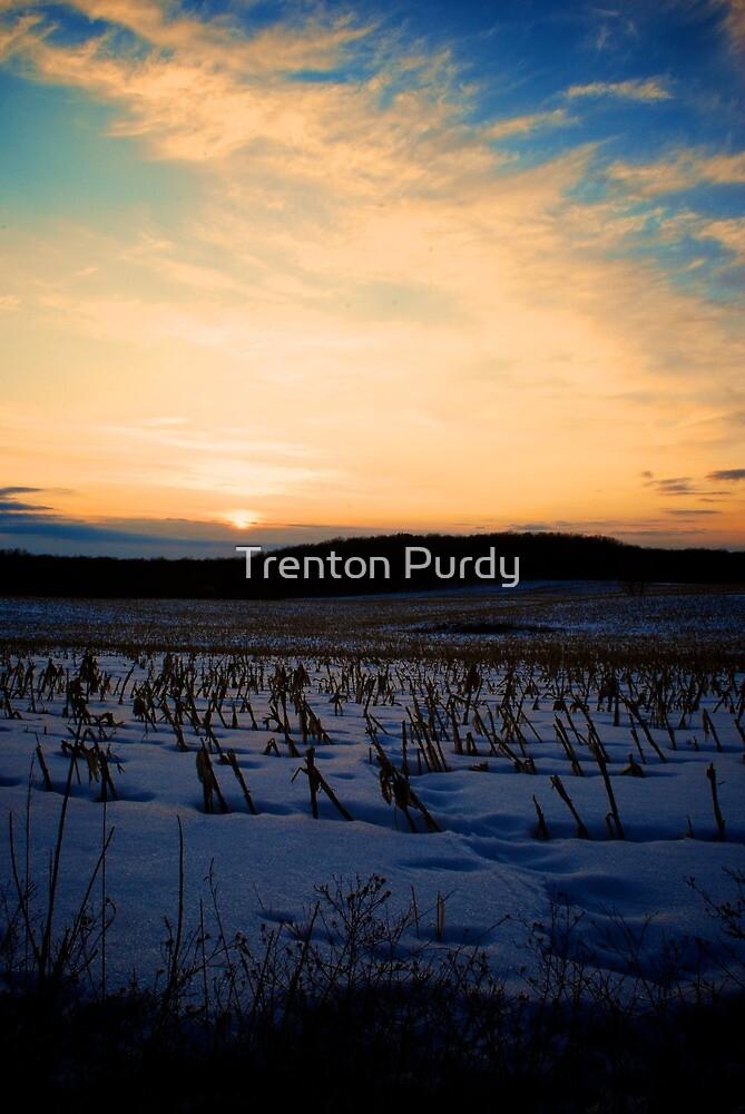 Winter Cornfield Sunset by Trenton Purdy