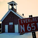 Evergreen N 6513 by Trenton Purdy