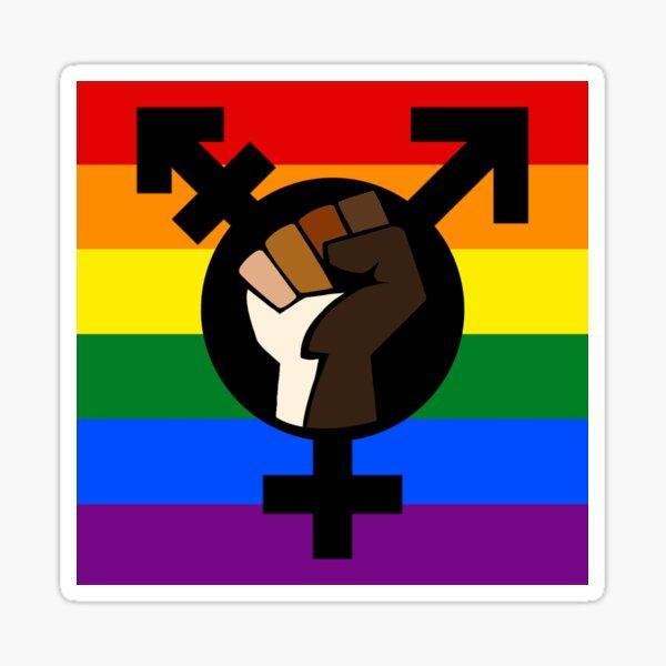 Interseccionalidad - Solidaridad entre raza, género y orientación Pegatina