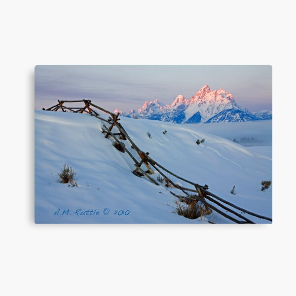 Running Buck & Rail, First Light on the Grand Canvas Print