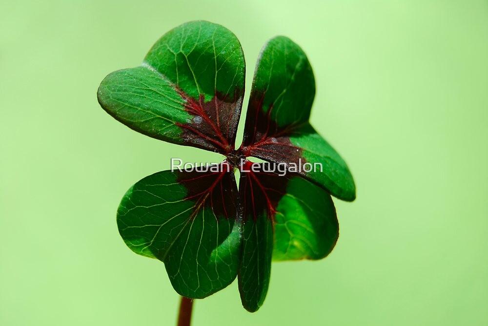 Irish Luck by Rowan  Lewgalon