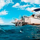 Crossed processed dive boat by muzy