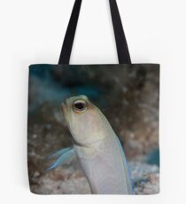 Yellow headed jawfish, Grand cayman Tote Bag