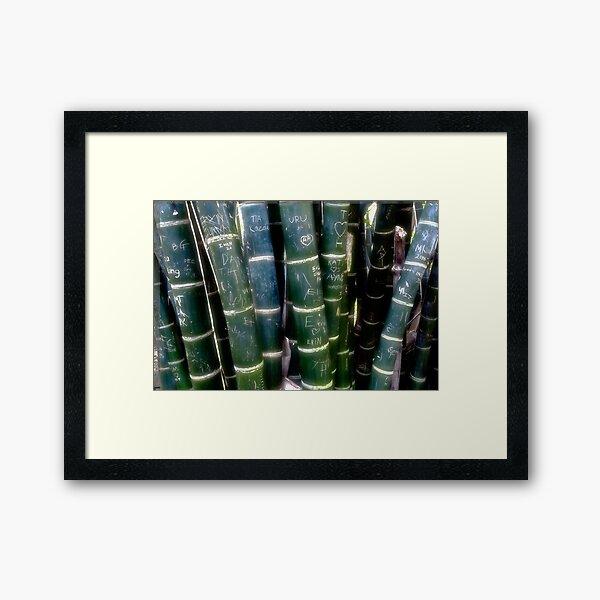 graffitti on bambo Framed Art Print