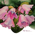 Pink Rhody Bells at Rhododendron Species Botanical Garden, Washington State by Pat Yager