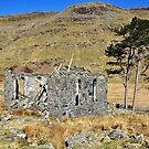 Cwmorthin, Wales by Manuel Gonçalves