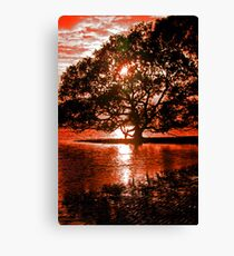 Earth, Sky and Water Canvas Print