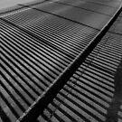 Shadow Railings by DExPIX
