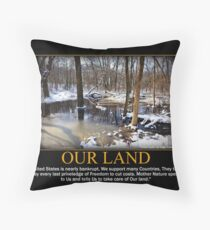 Creek In The Snow Throw Pillow