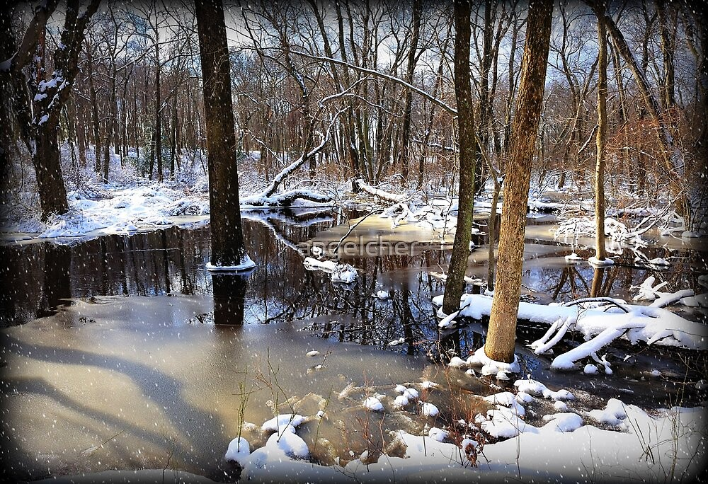 Snow By The Creek by angelcher