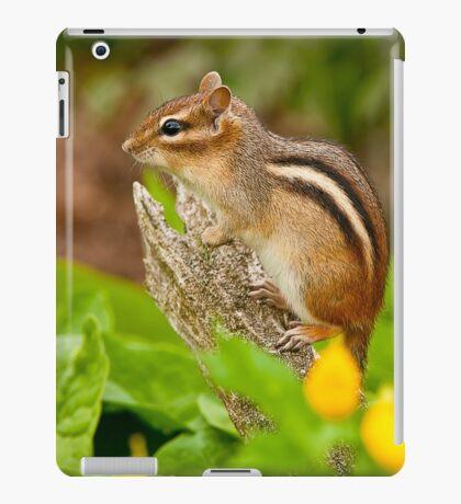 Chipmunk on Log iPad Case/Skin