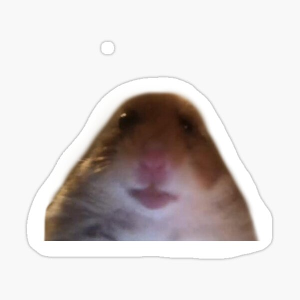 Hamster Starmememe Pegatina