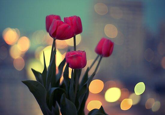 Tulips in twilight by Yuliya Art