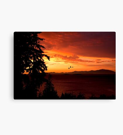 Sunset Over the Strait Canvas Print