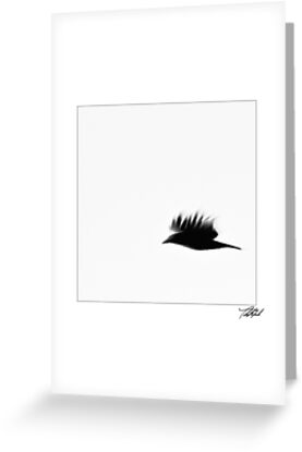 Black Bird by Theodore Black