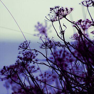 Dusk botanical by chihuahuashower