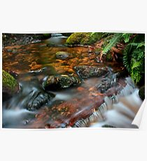 """Little Forester River"" Poster"