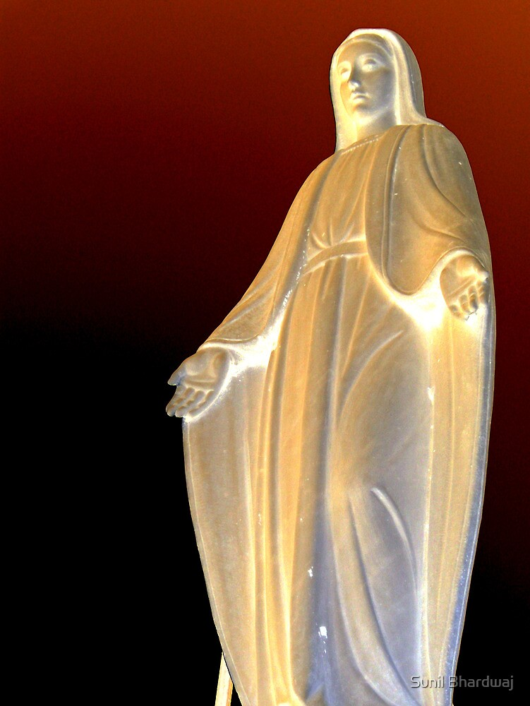 Mother mary Statue at Genova  by Sunil Bhardwaj