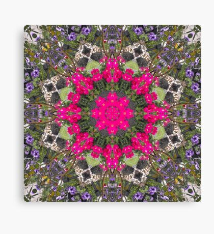 Pirates of the Pansies Fractured Canvas Print
