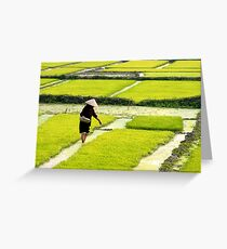 sowing Greeting Card