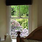 Rhododendron by artwhiz47