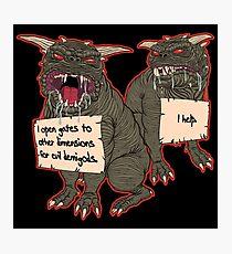 Terror Dog Shaming Photographic Print