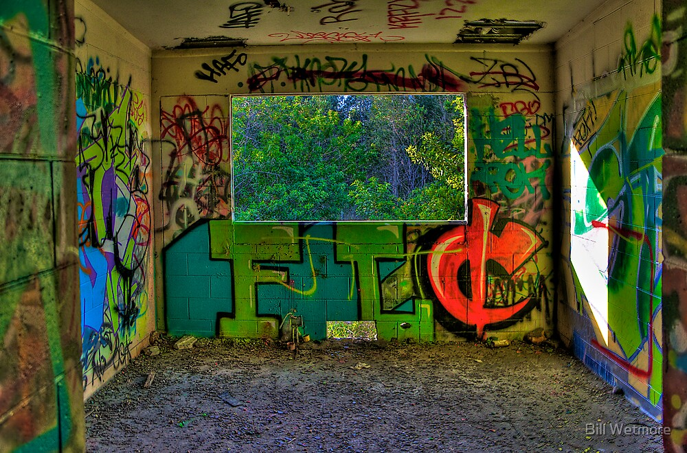 Graffiti Room with Forest View by Bill Wetmore