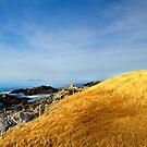 Falkland Islands Lighthouse by Ben Goode