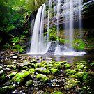 Russell Falls by Ben Goode