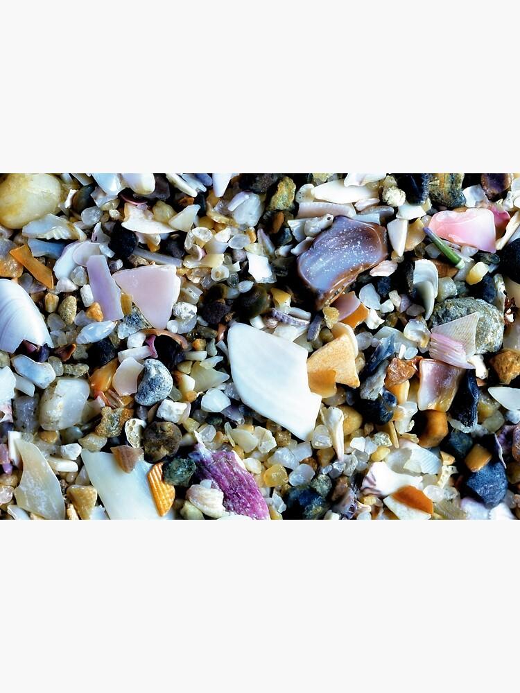 Crushed shells by fardad