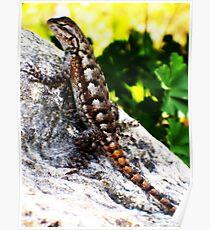 Patient Lizard Poster