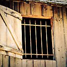 Barred Window by Christopher R. Watts