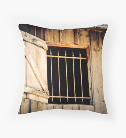 Barred Window Throw Pillow
