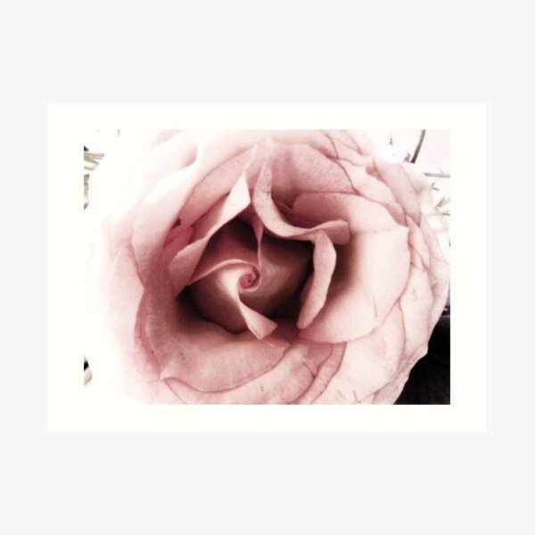 untitled flower Art Print