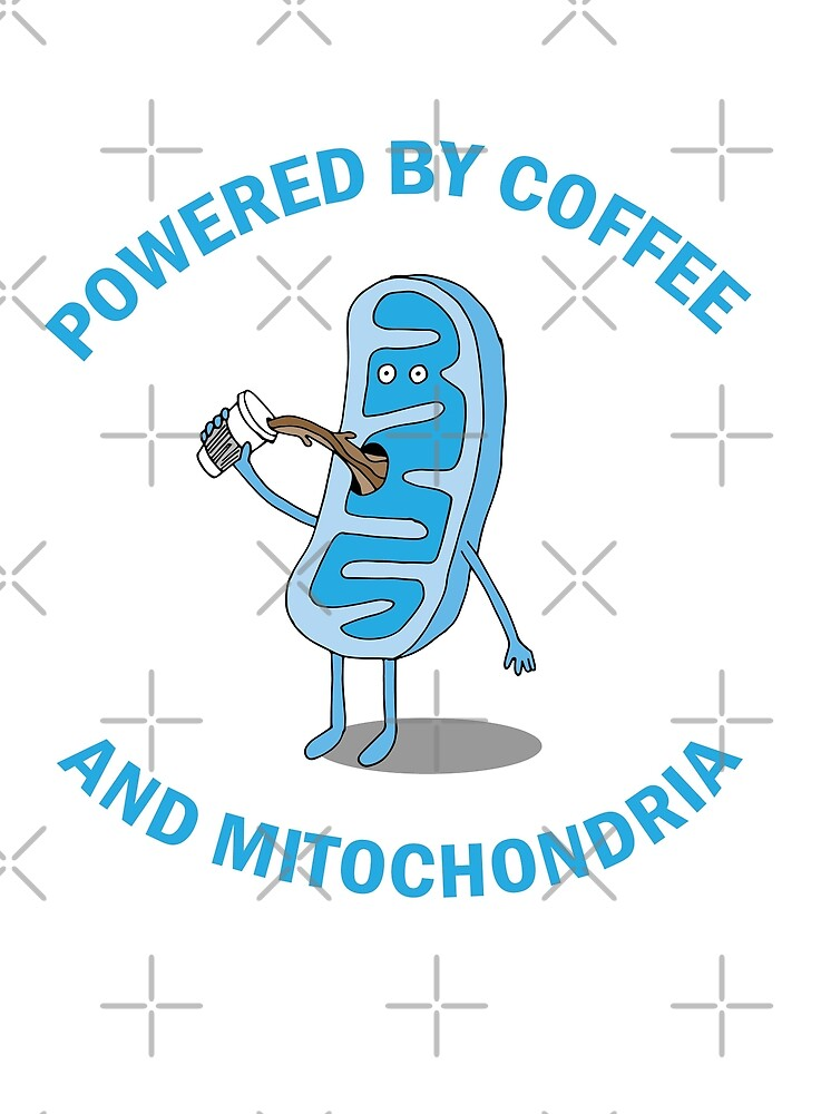 Powered By Coffee and Mitochondria