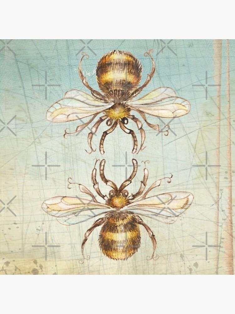 Bienen von pambrosini